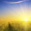Солнце зажигает уличные фонари в Элисте – видео