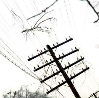 Электромонтаж воздушной линии электропередач