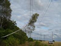 Падение деревьев на ЛЭП