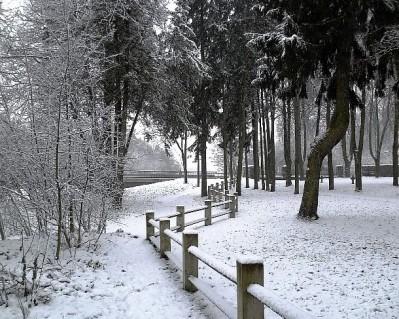 Парк Вингис