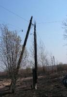 Сгоревшие опоры линии электропередач
