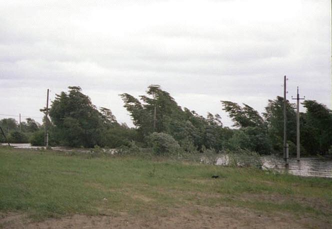 ГУ МЧС России по Алтайскому краю предупреждает об угрозе ЧС на 13 мая 2013 года.