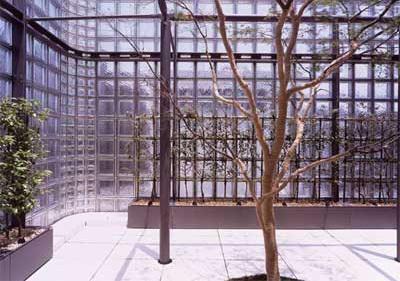 Зимний сад из стеклоблоков