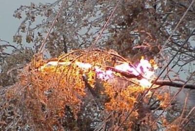 Возгорание дерева