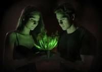 Светящееся растение