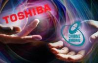 Силовые машины-Toshiba