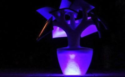 Настольная лампа бонсай