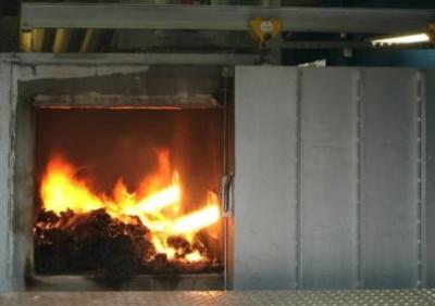 сжигание биоотходов