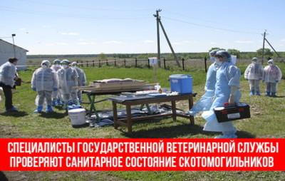 Контроль за утилизацией биологических отходов